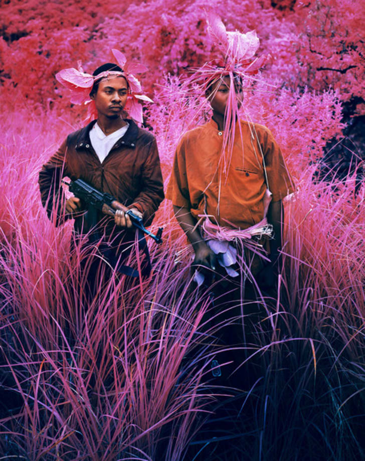 Hot Rats by Richard Mosse
