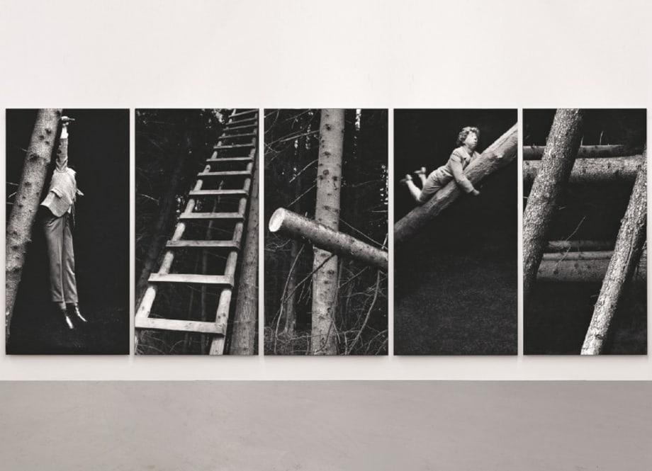 Im Wald (In the Forest) by Anna & Bernhard Blume
