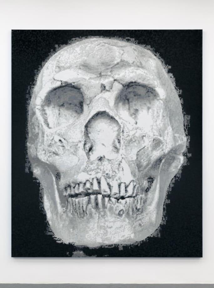 Karst Skull by Blake Rayne