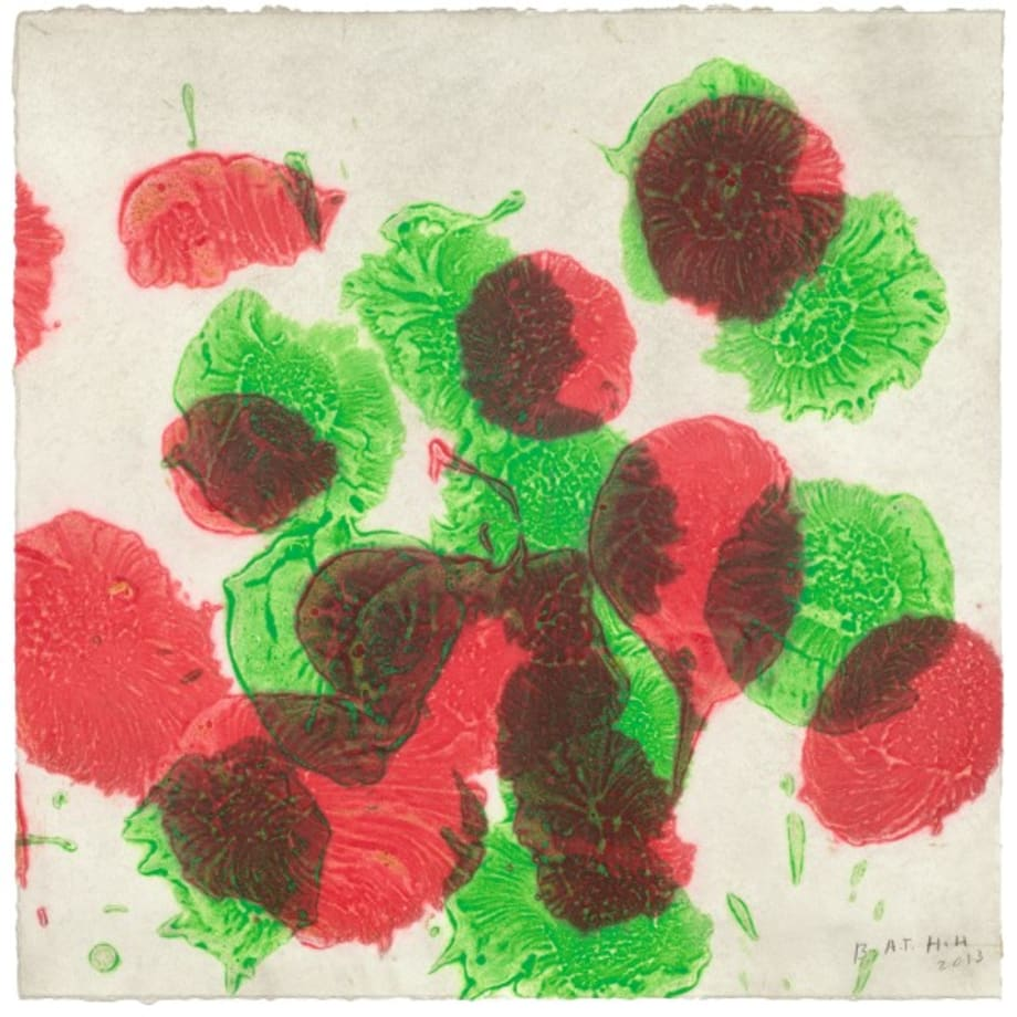Spots before my eyes by Howard Hodgkin