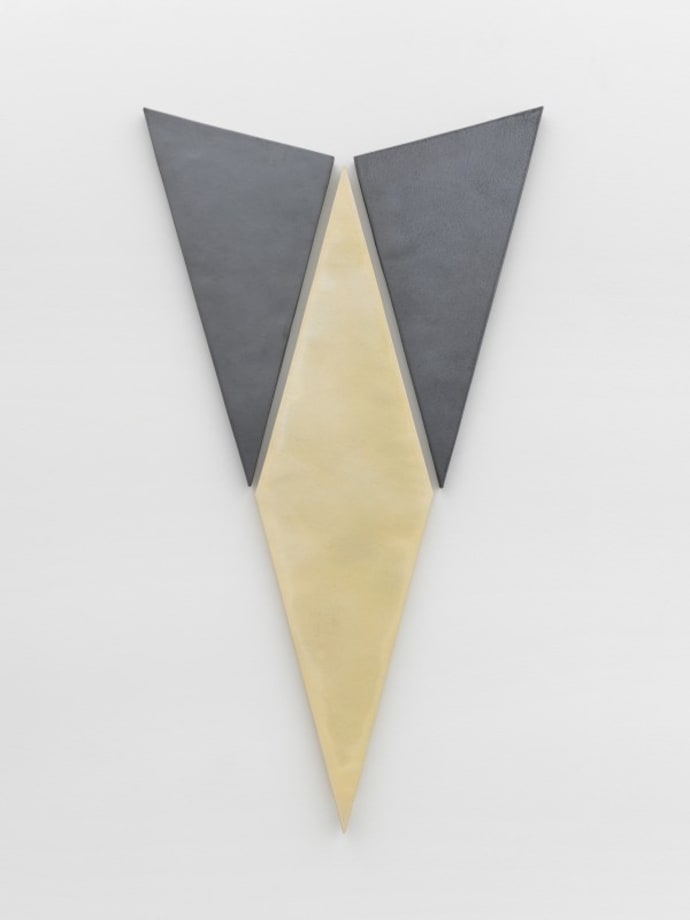 Shapes, colors, have already appeared by Mai-Thu Perret