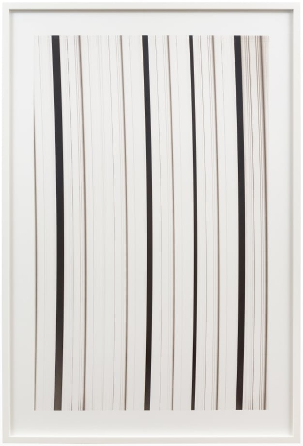 Absorption line_1 by Dove Allouche
