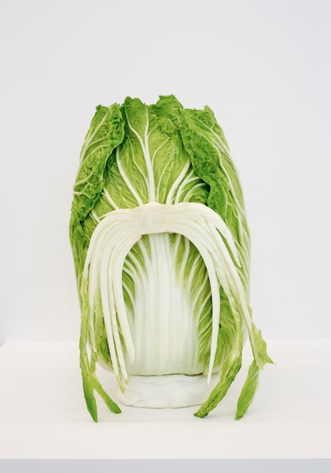 Cabbage head by João Maria Gusmão + Pedro Paiva