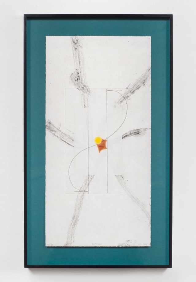 Blossom by Richard Tuttle