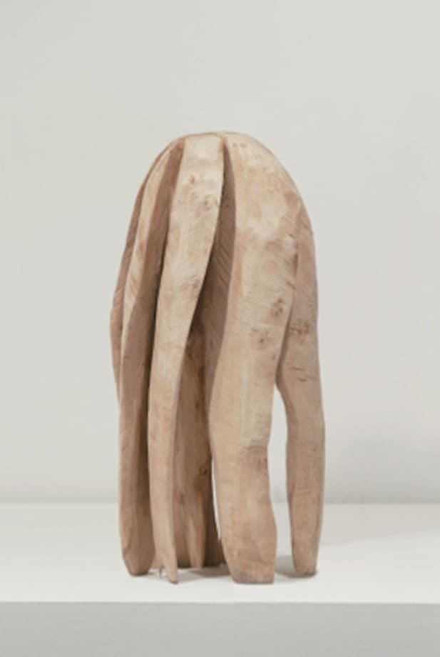 Seven Leg Birch by David Nash