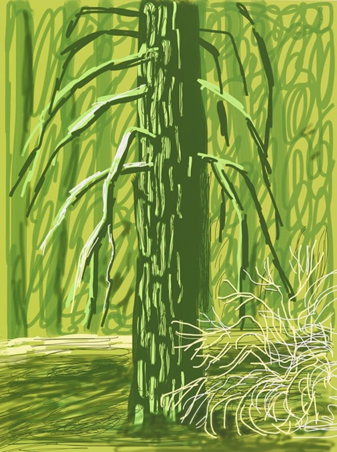 Untitled No. 18 from The Yosemite Suite by David Hockney