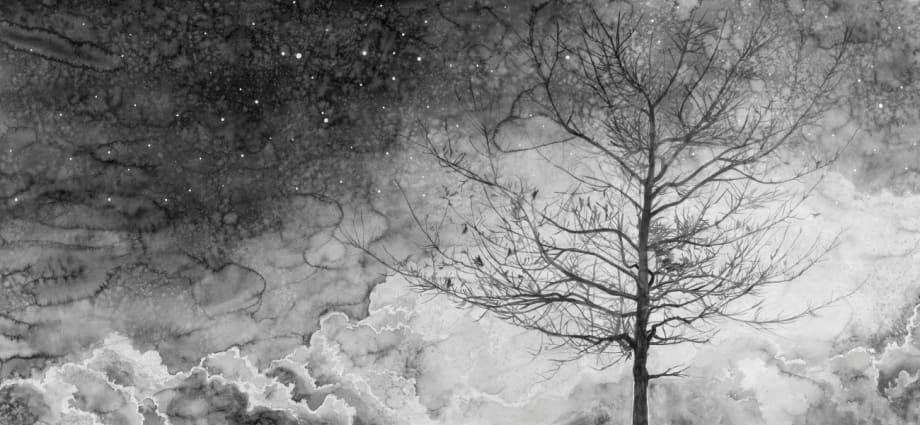'Nocturnal Scenery' (1) by Hans Op de Beeck