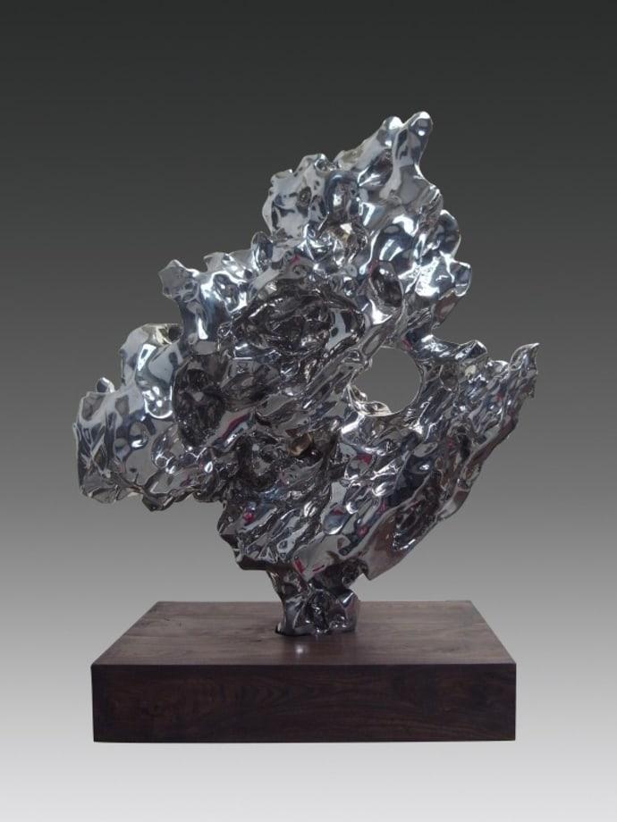 Artificial Rock No.60 by Zhan Wang