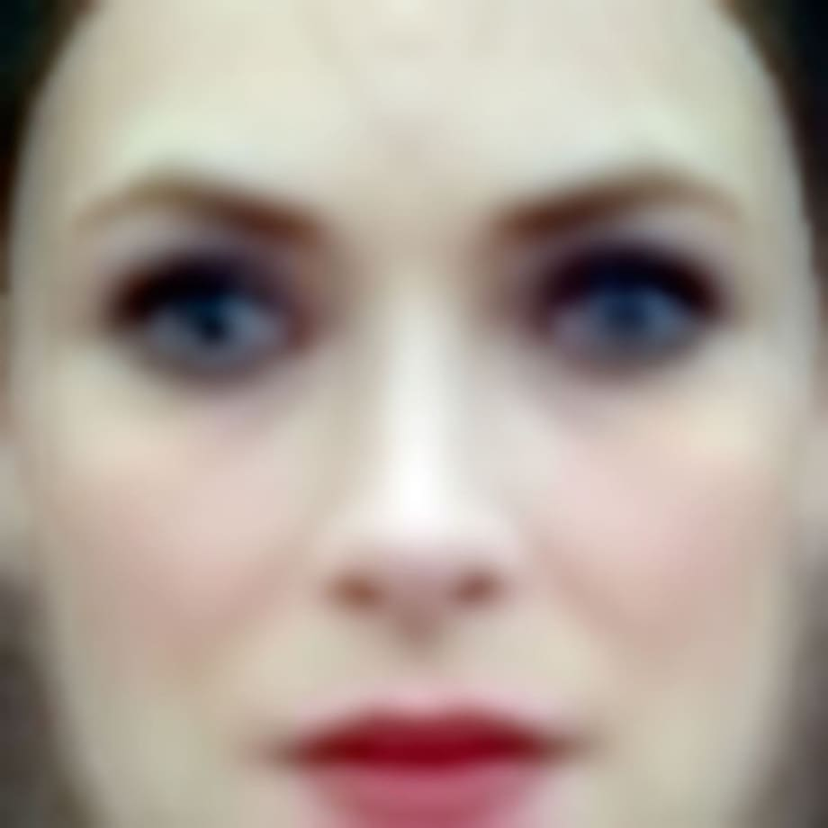 """Winona"" Eigenface; Labeled Faces in the Wild Dataset by Trevor Paglen"