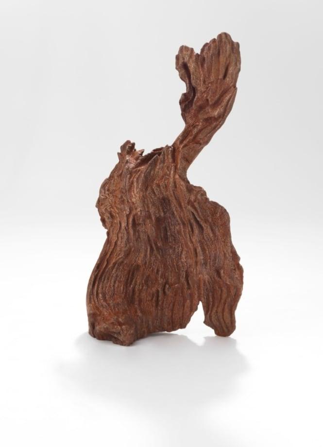 Iron Root by Ai Weiwei