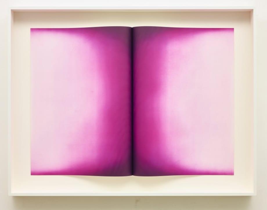 Fold IV by Anish Kapoor