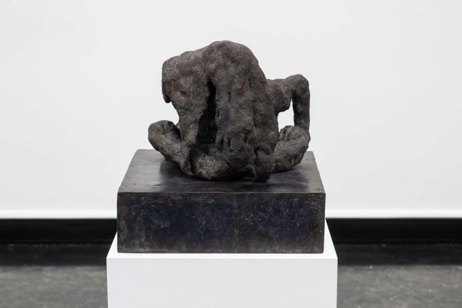 Untitled (Fur) by Peter Wächtler