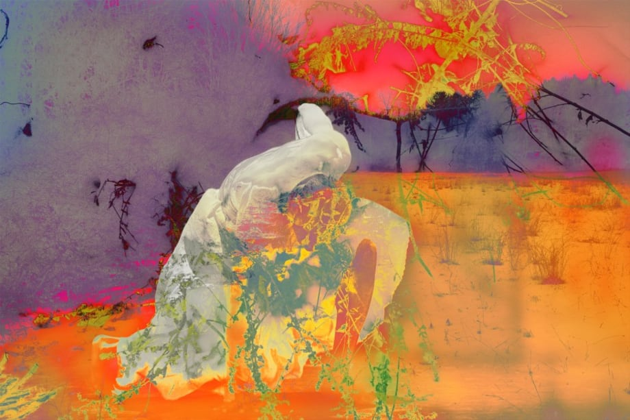 4222 by James Welling