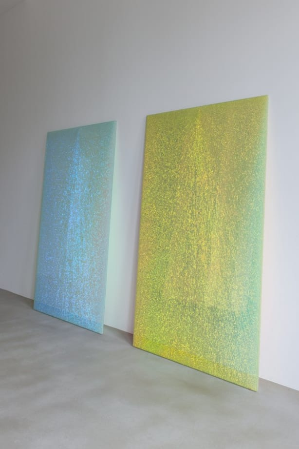 Magic Mirrors (Green & Pink#2) by Ann Veronica Janssens