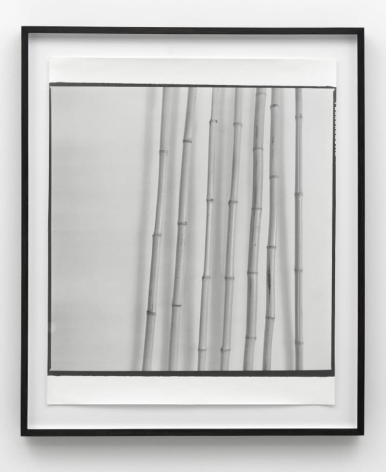 Untitiled (Bamboo) by Sigmar Polke