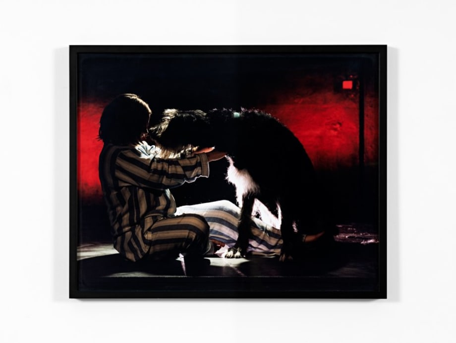 Der Schwarze Hund by Torbjørn Rødland
