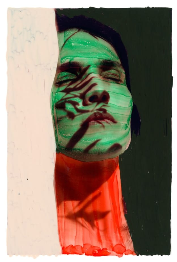 Untitled from Roxane II, 027b by Viviane Sassen