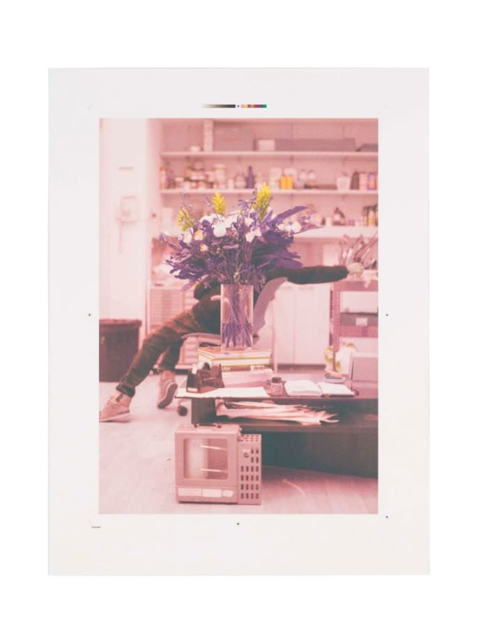Portrait of a blind artist obscured by flowers by Ryan Gander