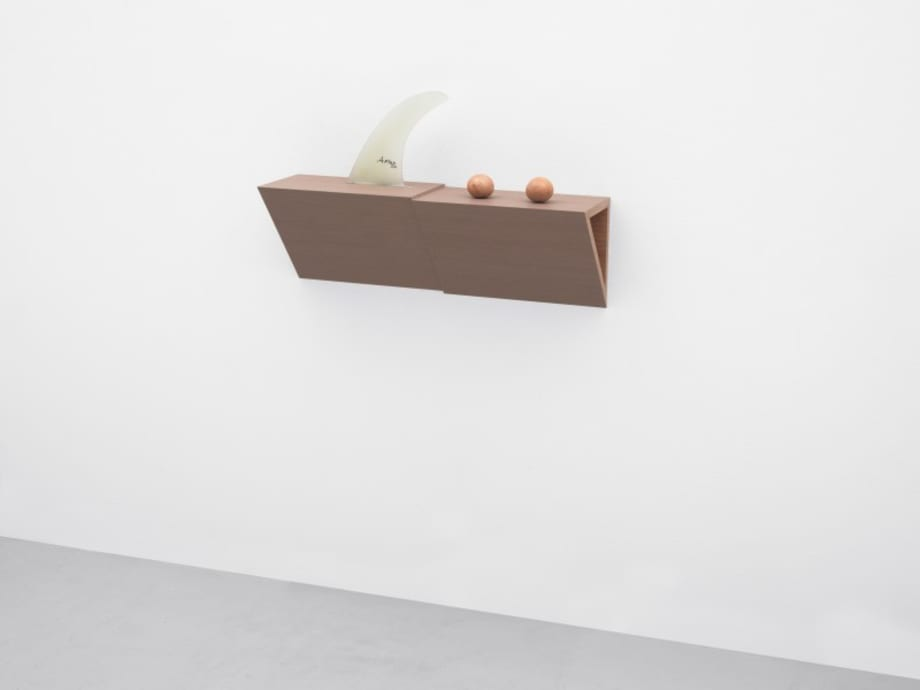 Untitled (fin, balls) by Haim Steinbach