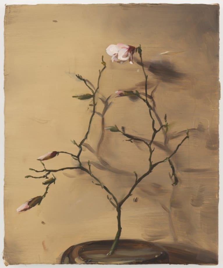 Magnolia by Michaël Borremans