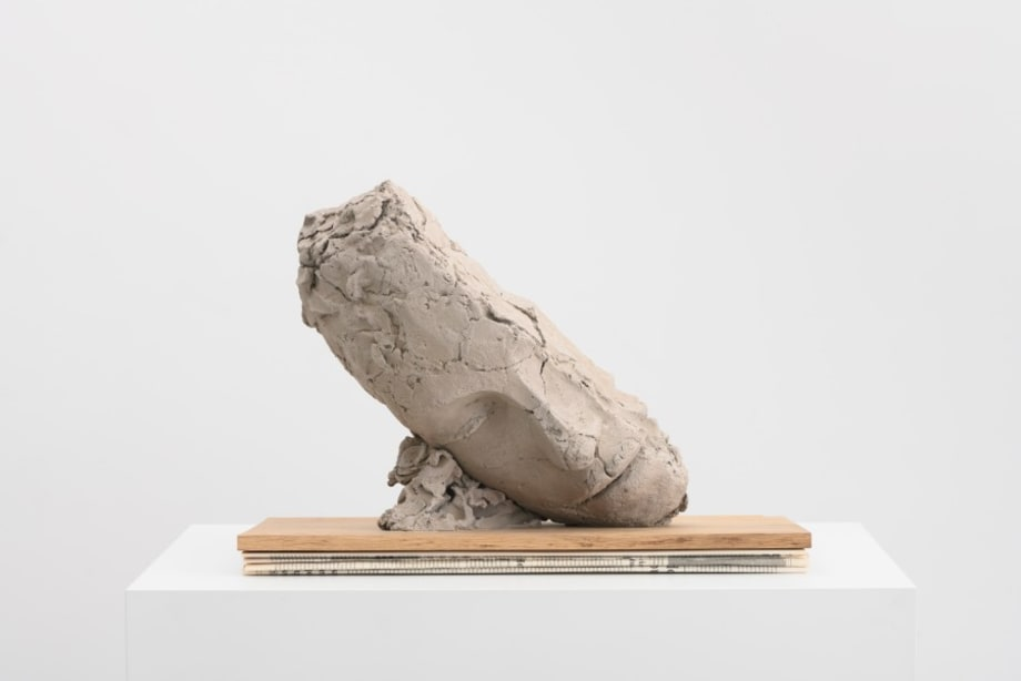 Study for Large Tilted Head by Mark Manders