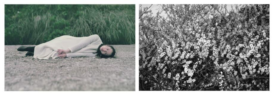 Flourishing by Chen Qiulin