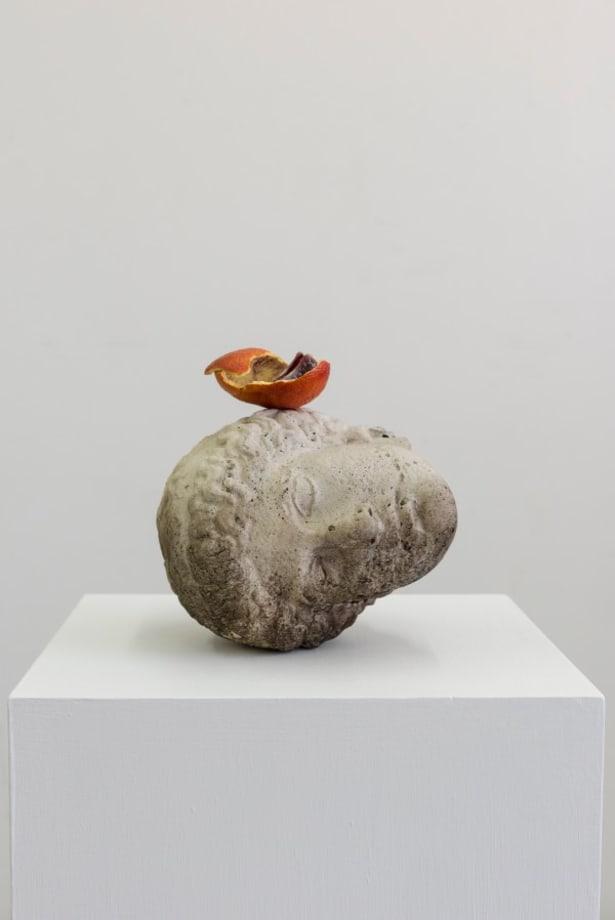 Head by Tony Matelli