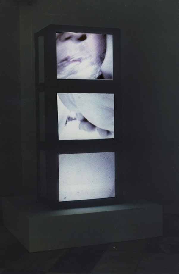 Individual Hygiene by Zhang Peili