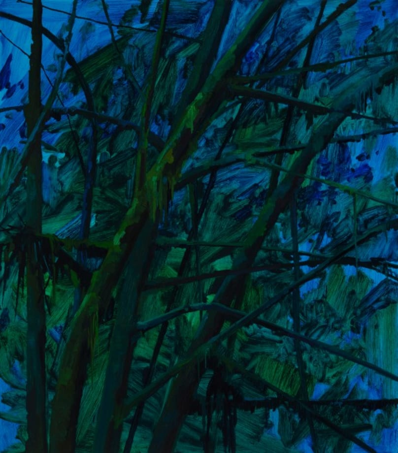 Branches and Night by Claire Sherman
