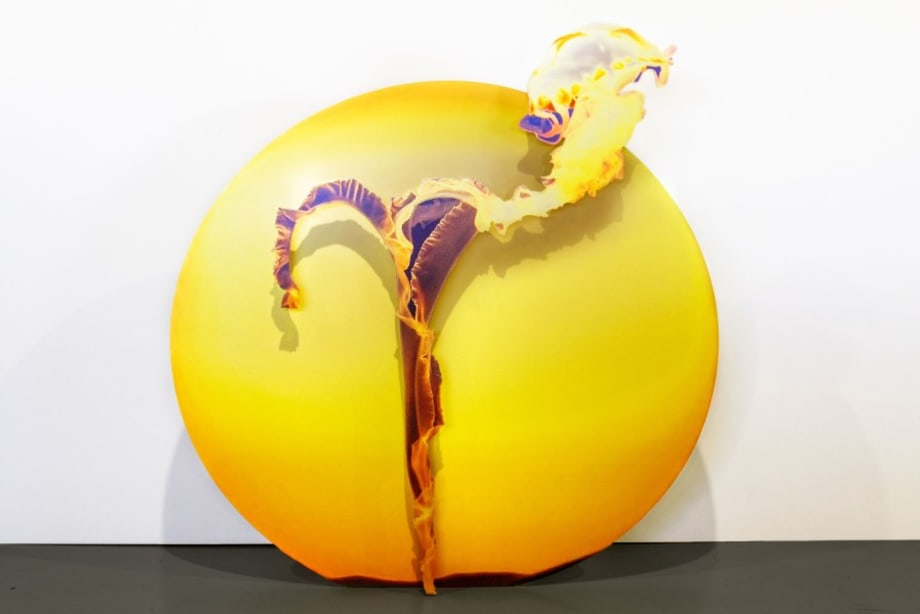 Light Trajectory (jellyfish), by Katja Novitskova