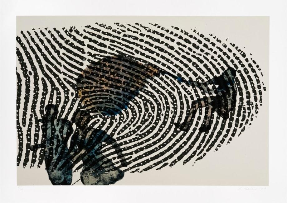 Limits of Identity by Nalini Malani