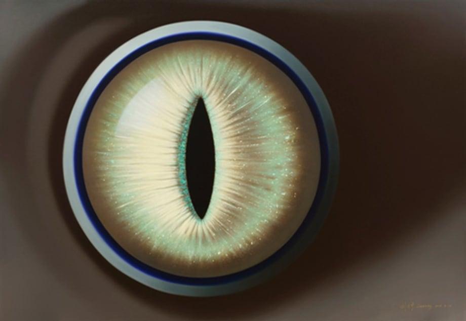 Grey Eyes by Zining Liu