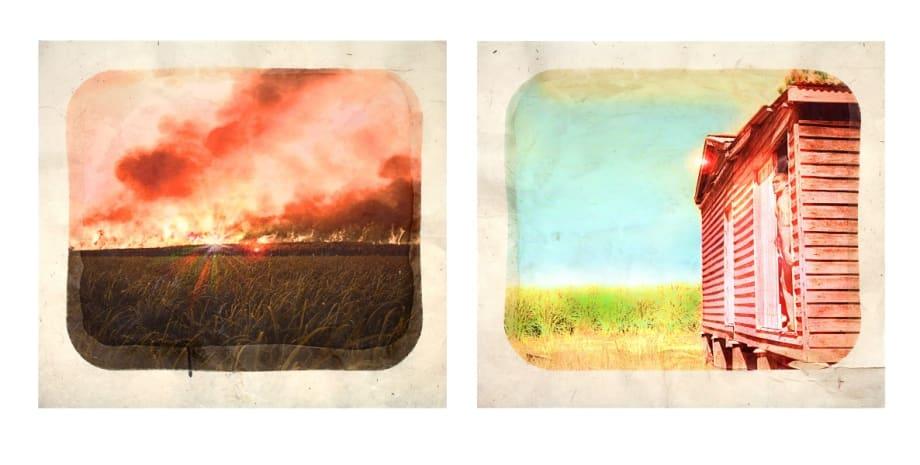 Plantation (Diptych No. 9) by Tracey Moffatt