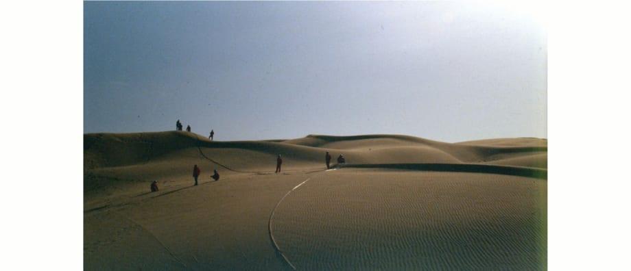 Project Taklamakan by Zhao Zhao