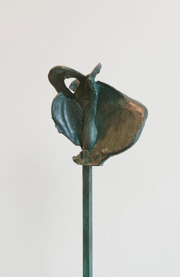 Noeud 5.2 Varia 1 by Jean-Luc Moulène
