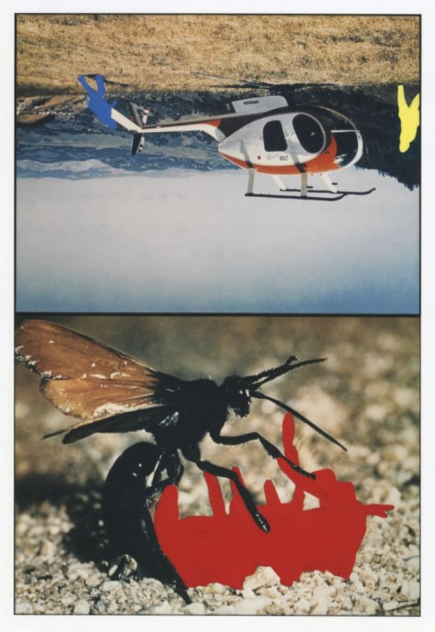 Helicopter and insects (One Red), version 1 by John Baldessari