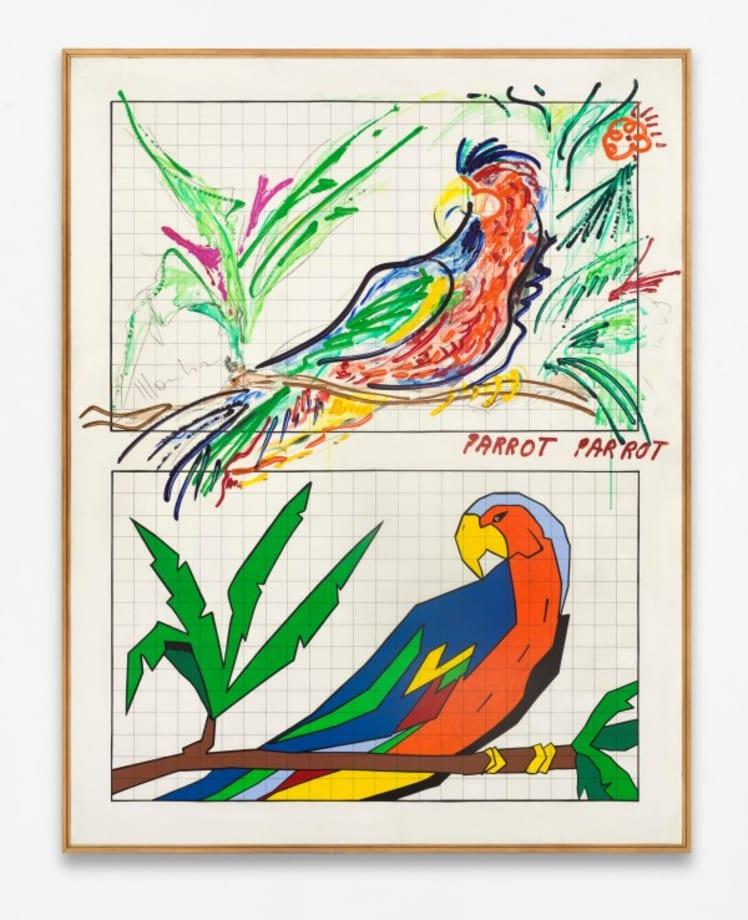 Parrot parrot by Aldo Mondino