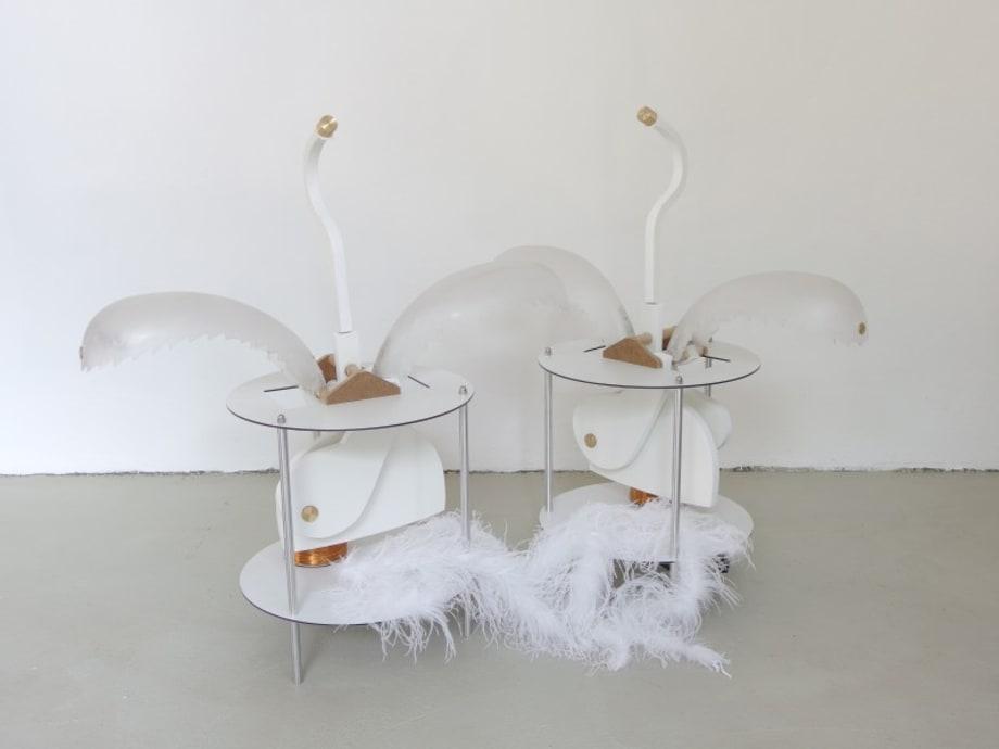 Spacial Birds (in a conversation) by Thomas Baumann