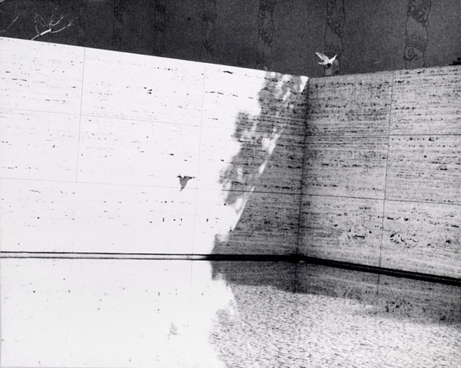 Untitled (Barcelona Pavilion) by Jochen Lempert