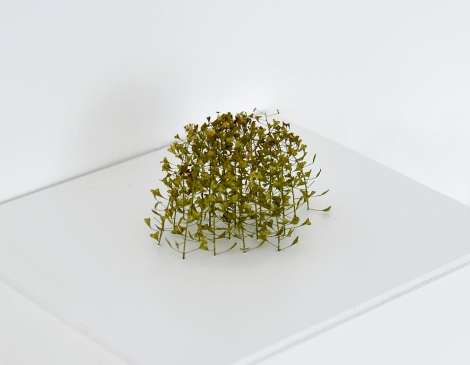 Kleiner Rhombus by Christiane Löhr