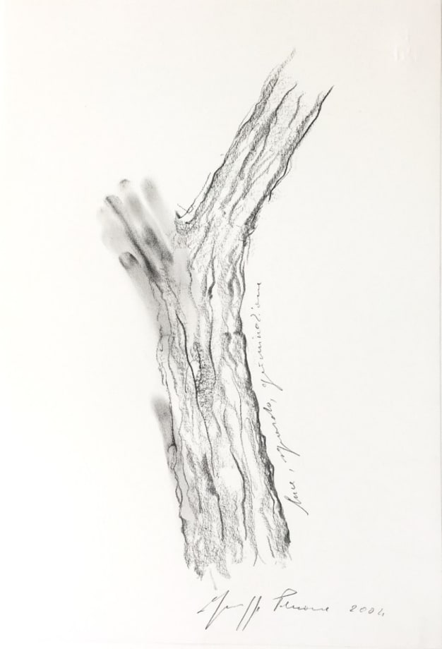 Germinazione by Giuseppe Penone