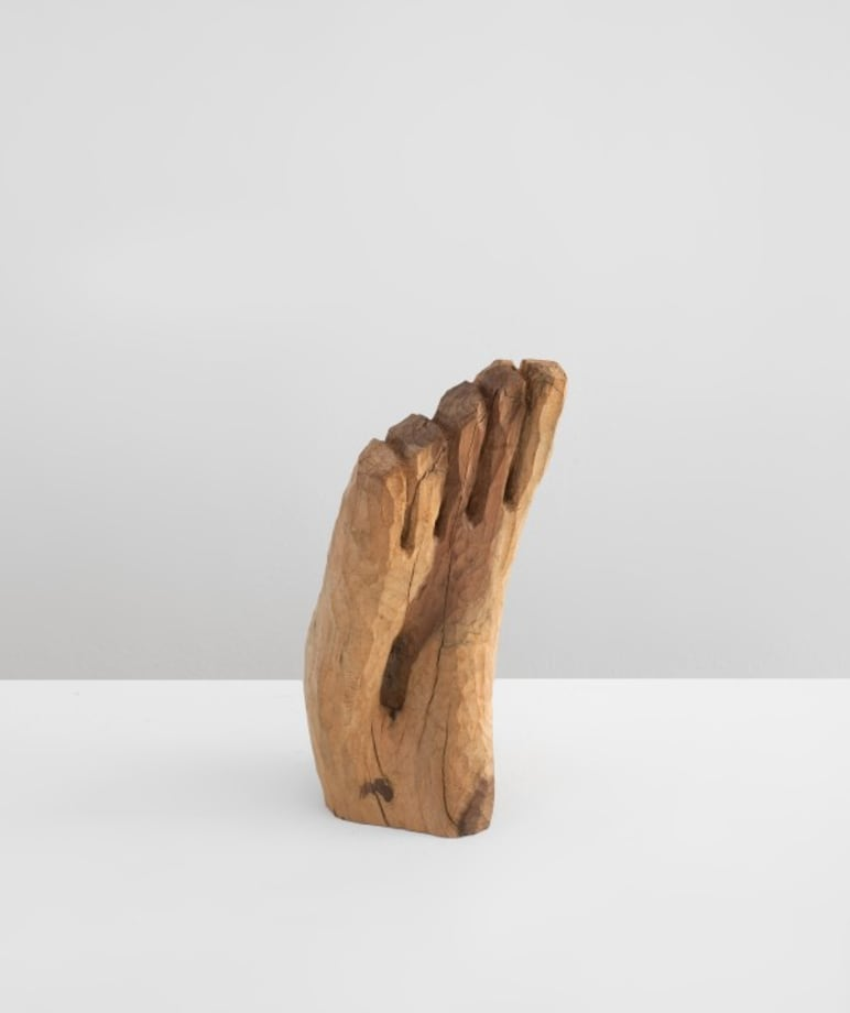 Foot by Etienne-Martin