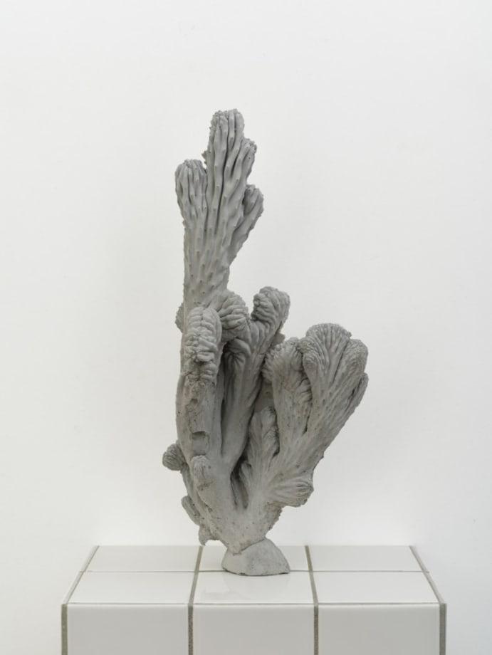 Individual Plant by Zhang Ruyi
