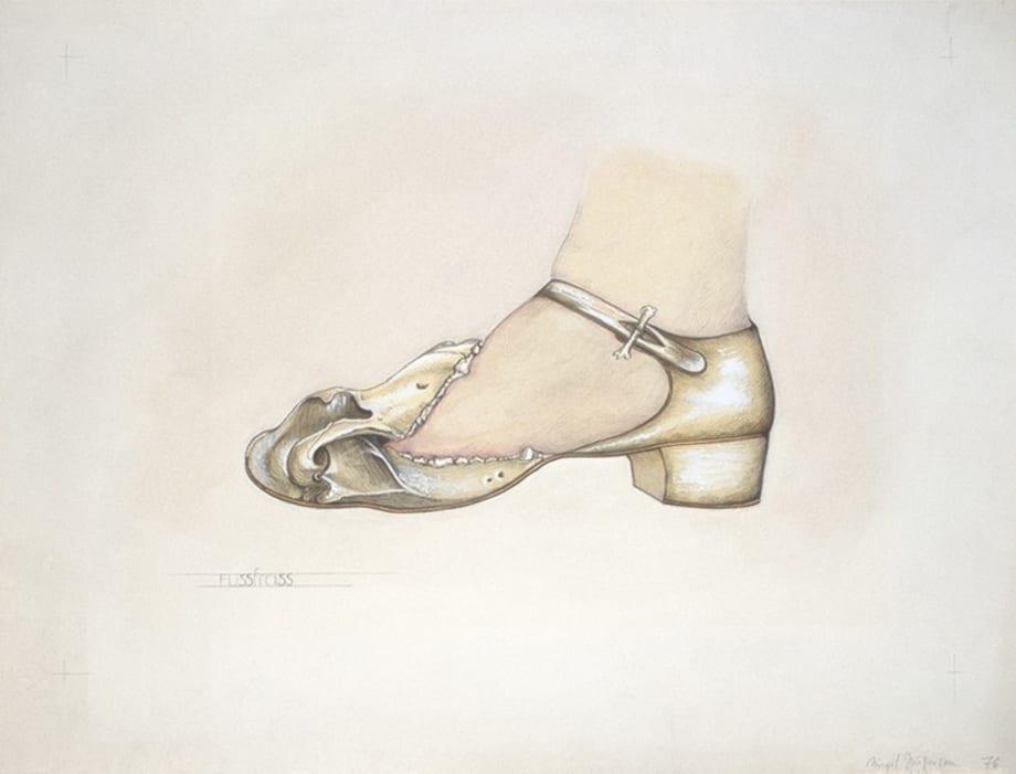 Foot Canker by Birgit Jürgenssen