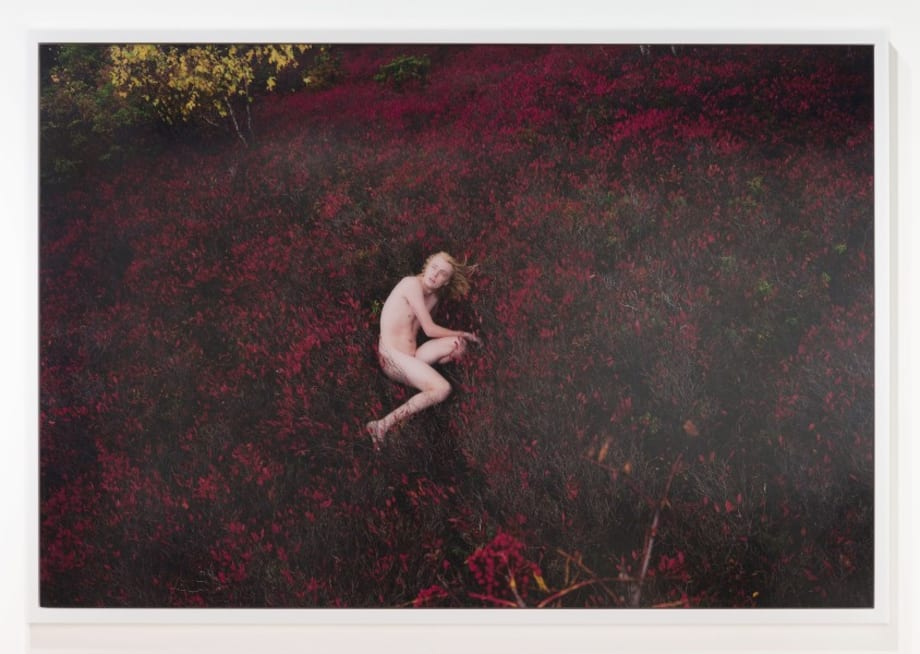 Jacob (Red Blueberry) by Ryan McGinley