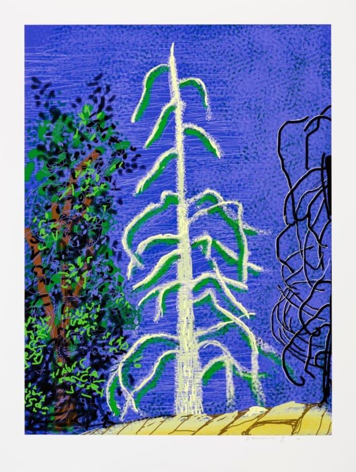 The Yosemite Suite n°14 by David Hockney