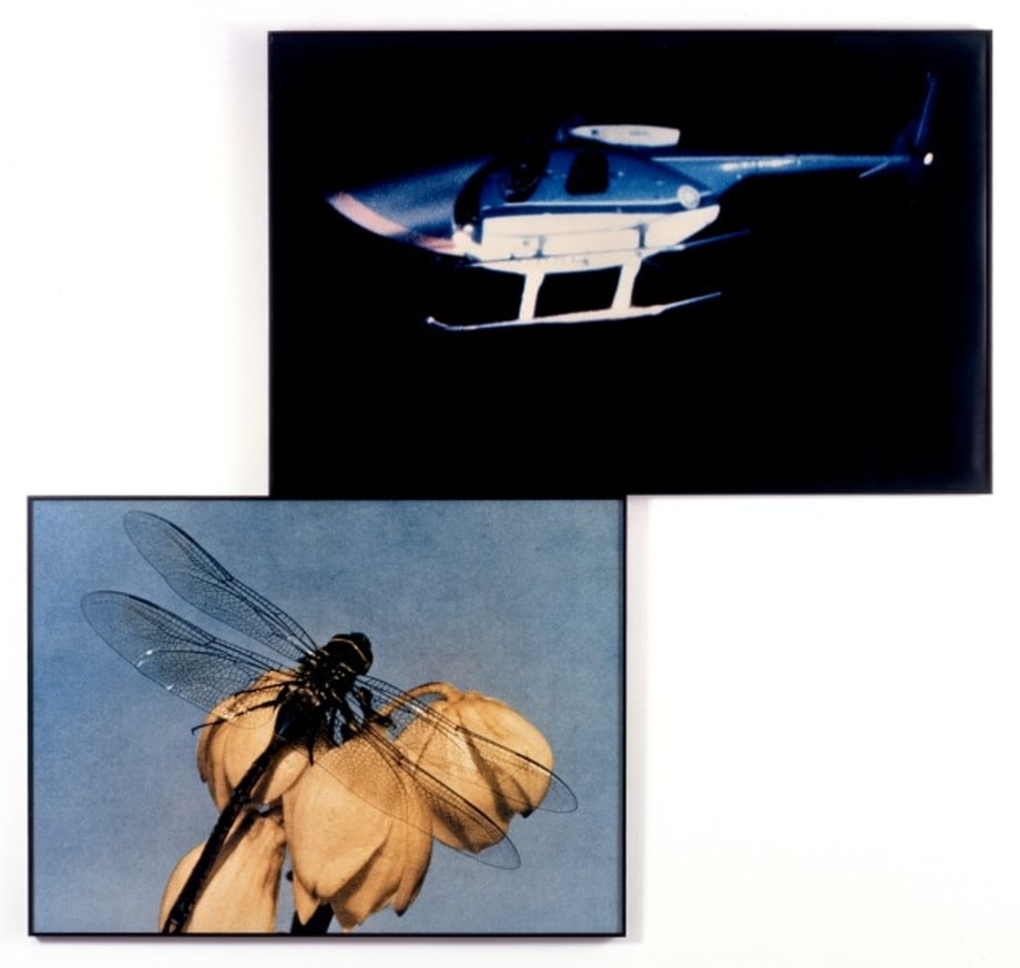 Helicopter and Dragonfly (Observing/Observed) by John Baldessari