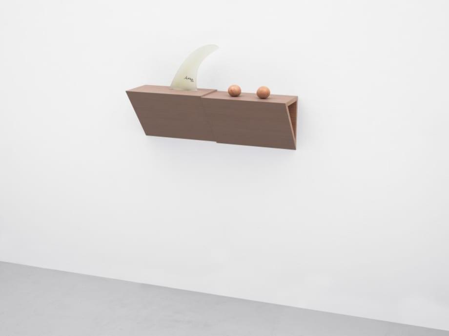 Untitled (fin, balls) by Haim Steinbach