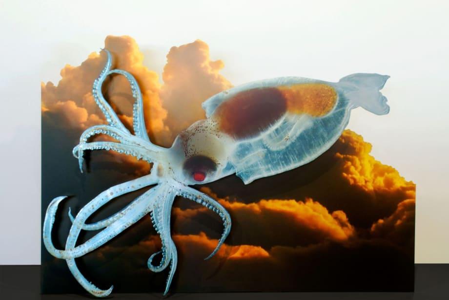 Squid Trajectory (Antarctic) by Katja Novitskova
