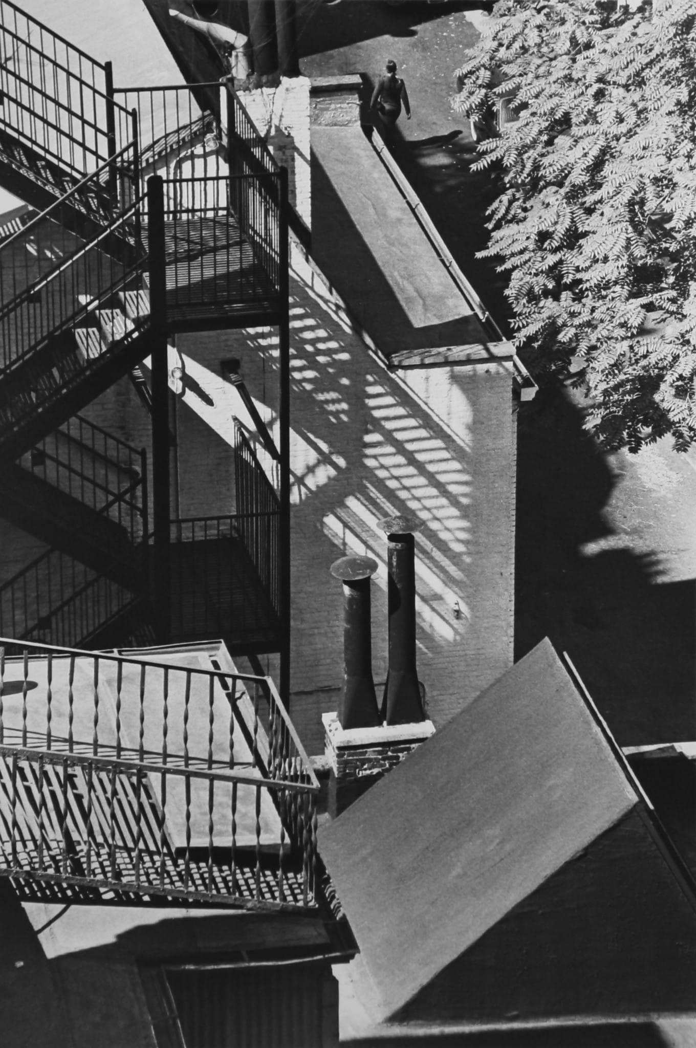 Untitled by André Kertész